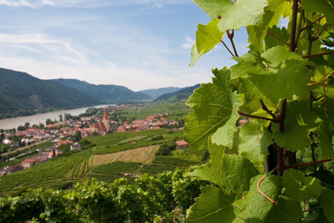 Austria image 1 of 5